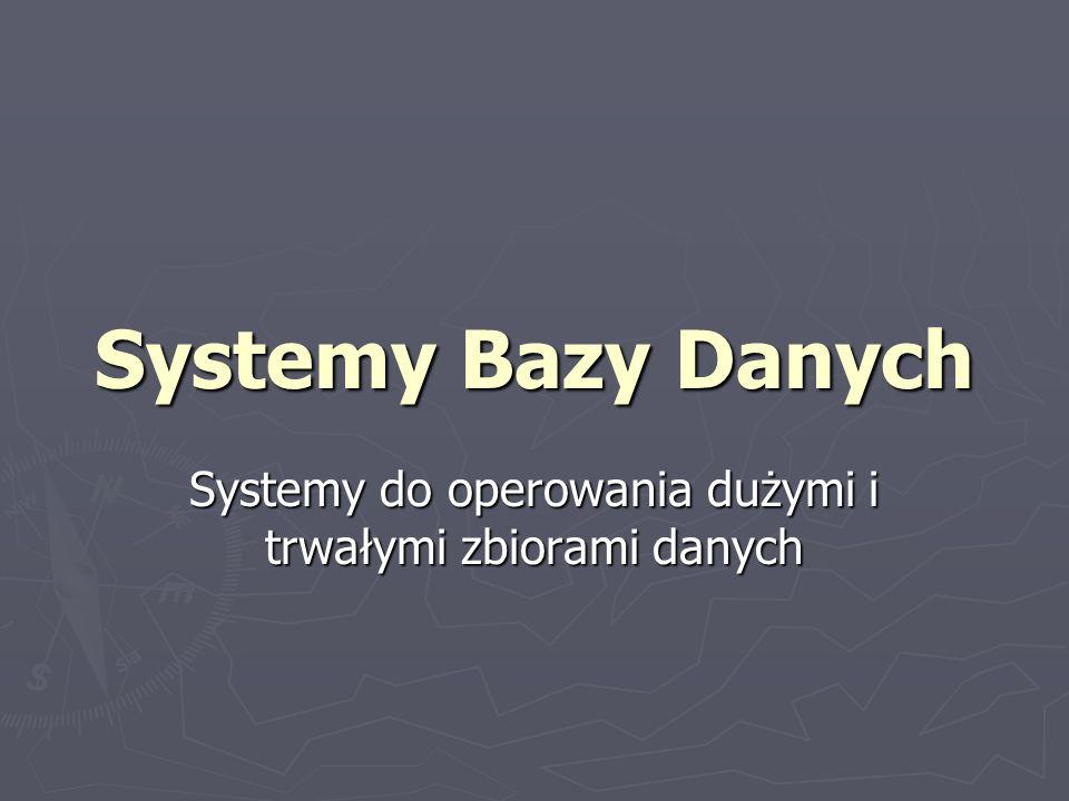 Systemy do operowania dużymi i trwałymi zbiorami danych