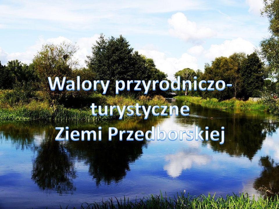 Walory przyrodniczo-turystyczne Ziemi Przedborskiej