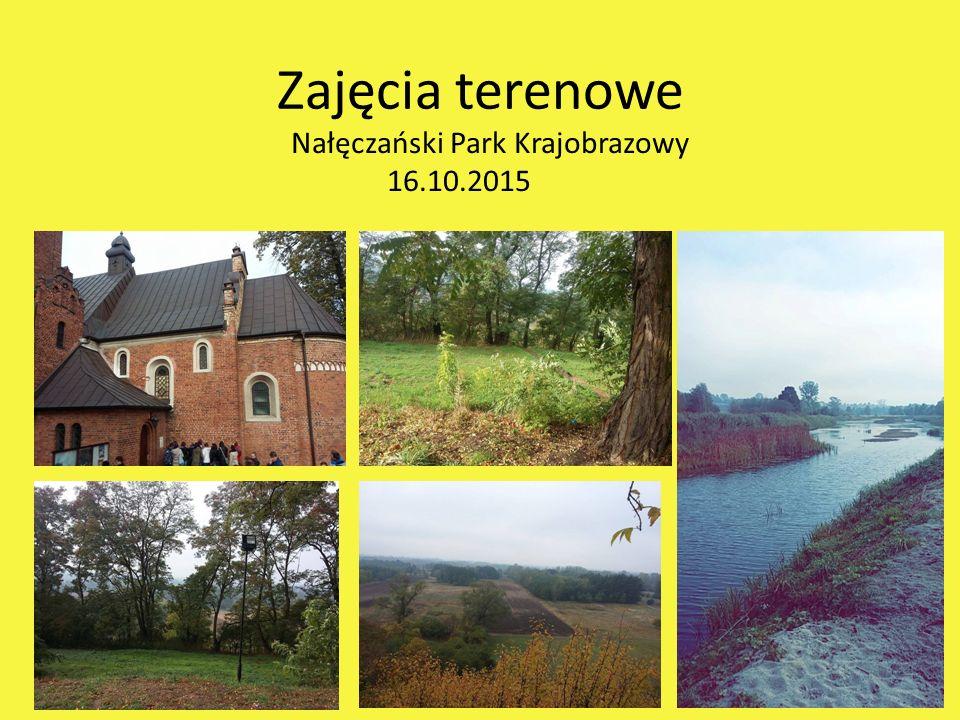 Zajęcia terenowe Nałęczański Park Krajobrazowy 16.10.2015