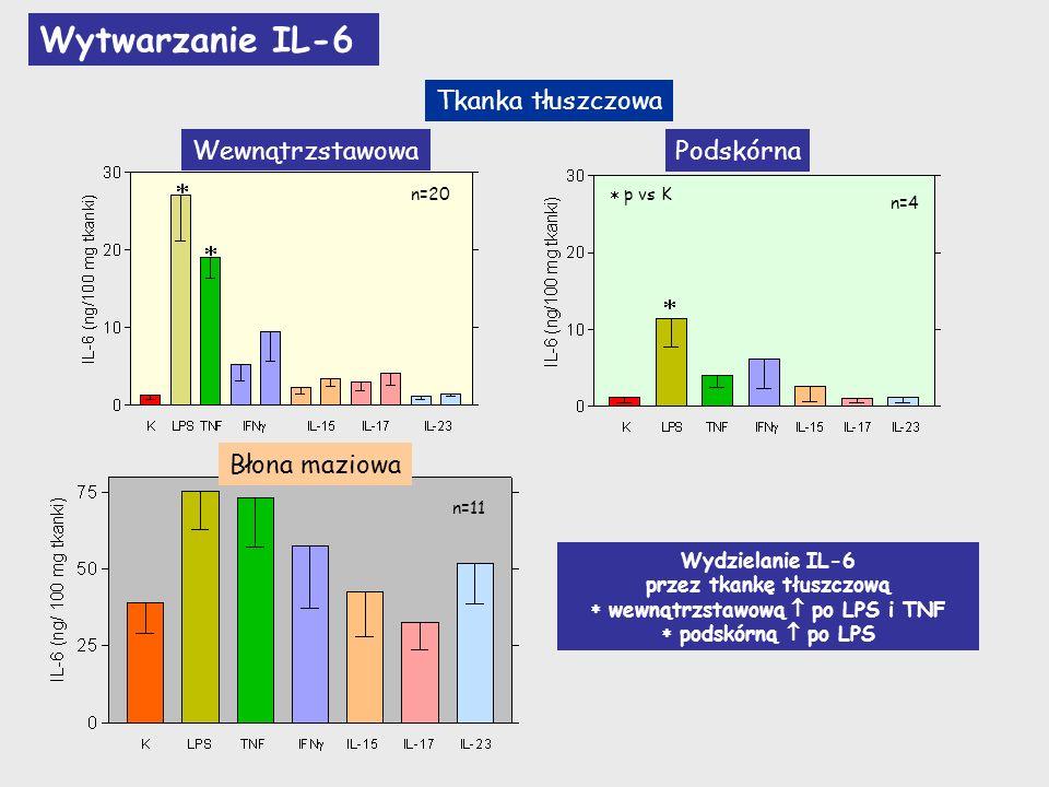 przez tkankę tłuszczową  wewnątrzstawową  po LPS i TNF