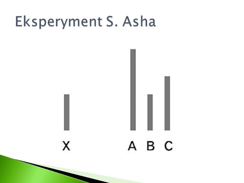 Eksperyment S. Asha
