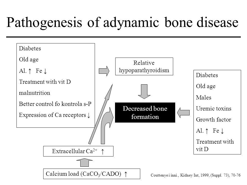 Pathogenesis of adynamic bone disease