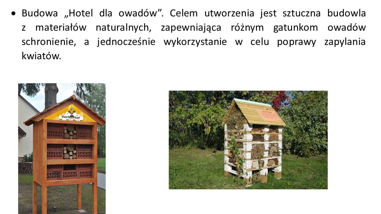"""Budowa """"Hotel dla owadów"""