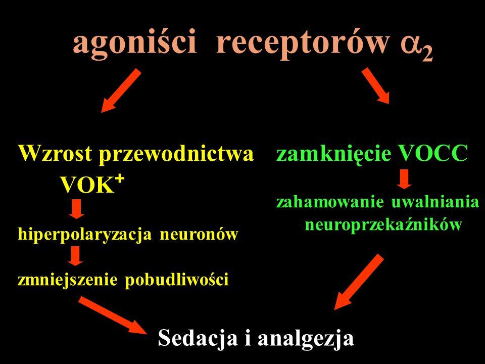 agoniści receptorów a2 Wzrost przewodnictwa VOK+ zamknięcie VOCC