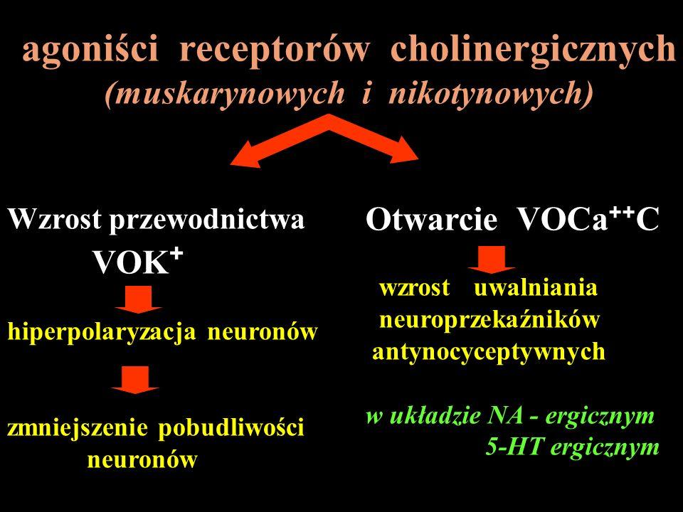 agoniści receptorów cholinergicznych (muskarynowych i nikotynowych)