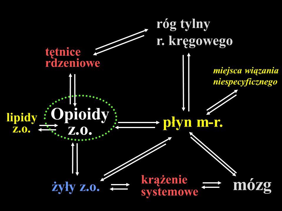 Opioidy z.o. mózg płyn m-r. róg tylny r. kręgowego żyły z.o. tętnice