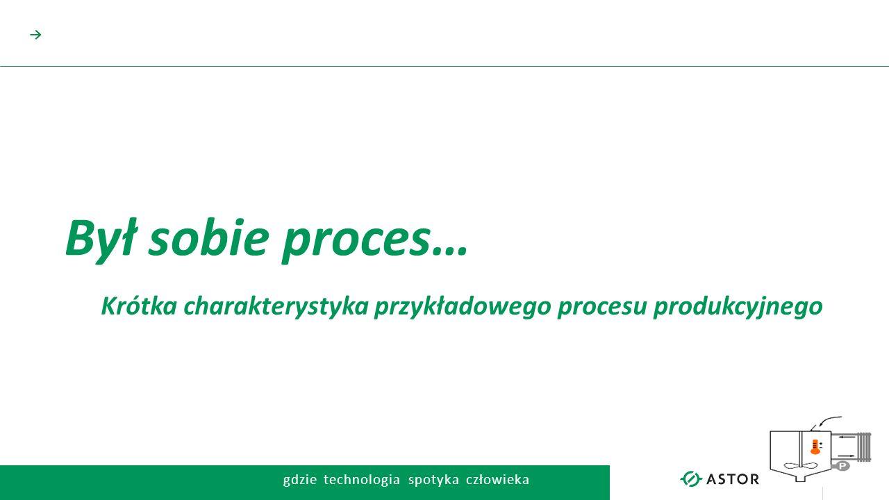 Krótka charakterystyka przykładowego procesu produkcyjnego