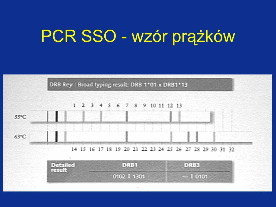 PCR SSO - wzór prążków