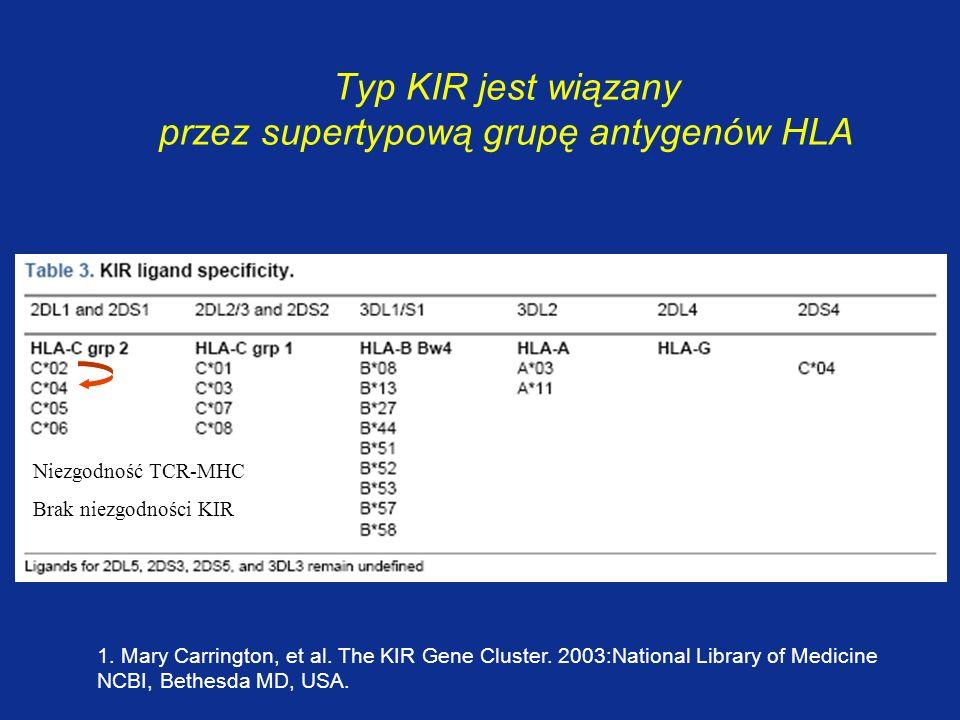 Typ KIR jest wiązany przez supertypową grupę antygenów HLA