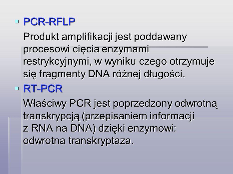 PCR-RFLP Produkt amplifikacji jest poddawany procesowi cięcia enzymami restrykcyjnymi, w wyniku czego otrzymuje się fragmenty DNA różnej długości.