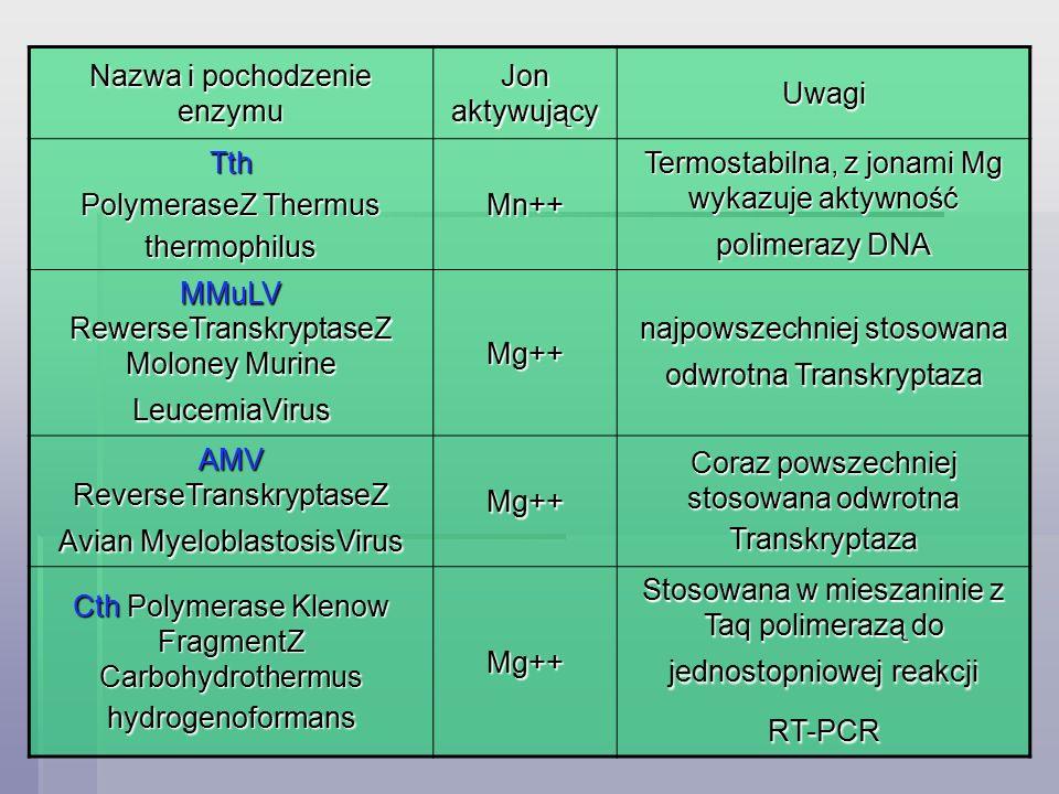 Nazwa i pochodzenie enzymu Jon aktywujący Uwagi Tth