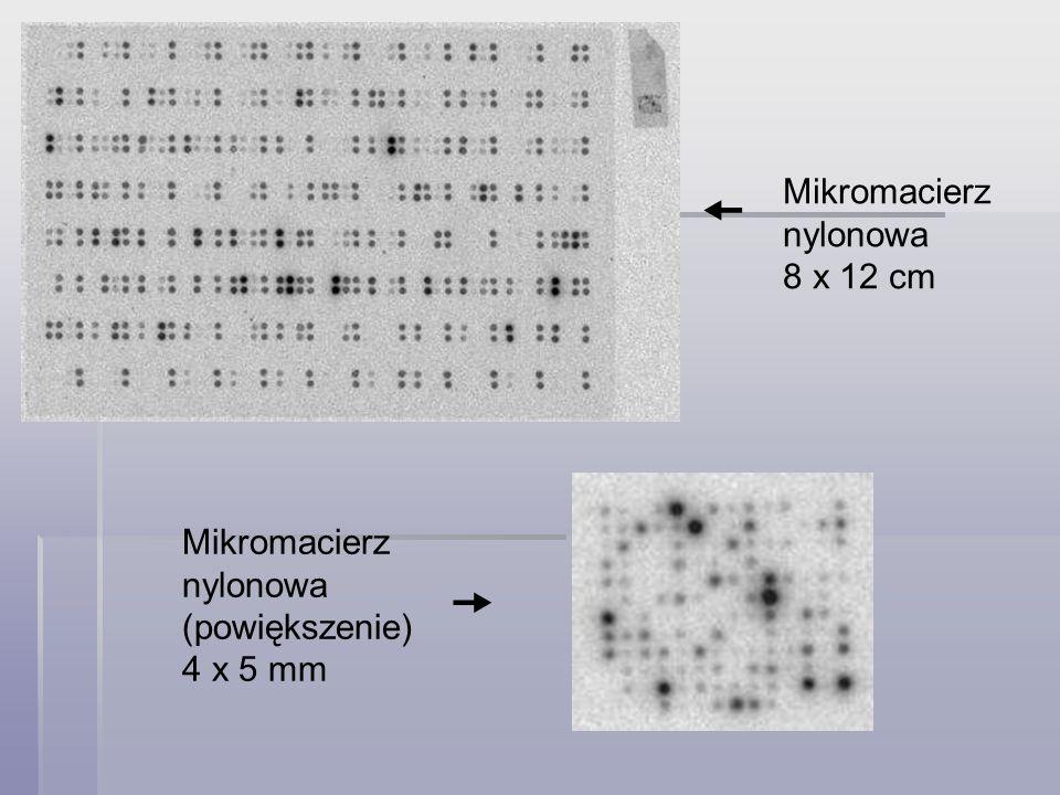   Mikromacierz nylonowa 8 x 12 cm Mikromacierz nylonowa