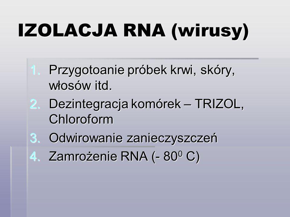 IZOLACJA RNA (wirusy) Przygotoanie próbek krwi, skóry, włosów itd.
