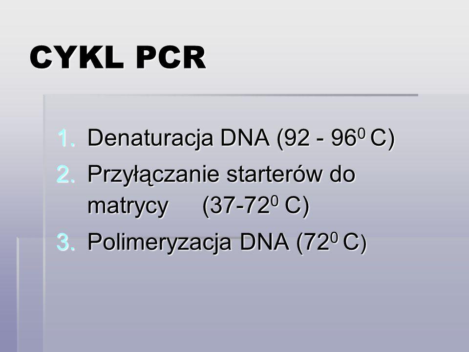 CYKL PCR Denaturacja DNA (92 - 960 C)