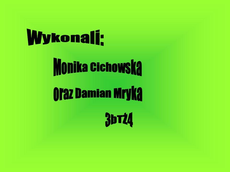 Wykonali: Monika Cichowska oraz Damian Mryka 3bTŻ4