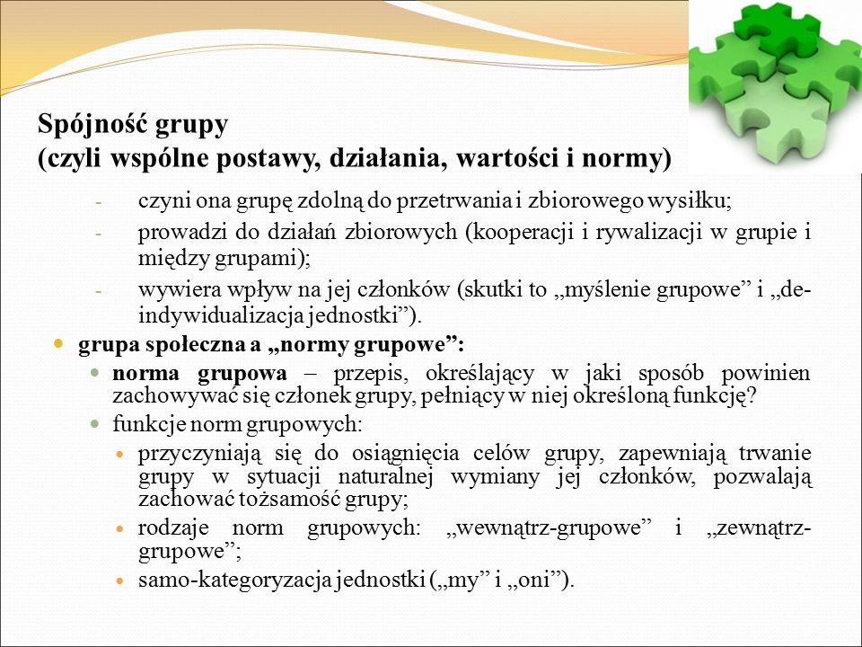 Spójność grupy (czyli wspólne postawy, działania, wartości i normy)