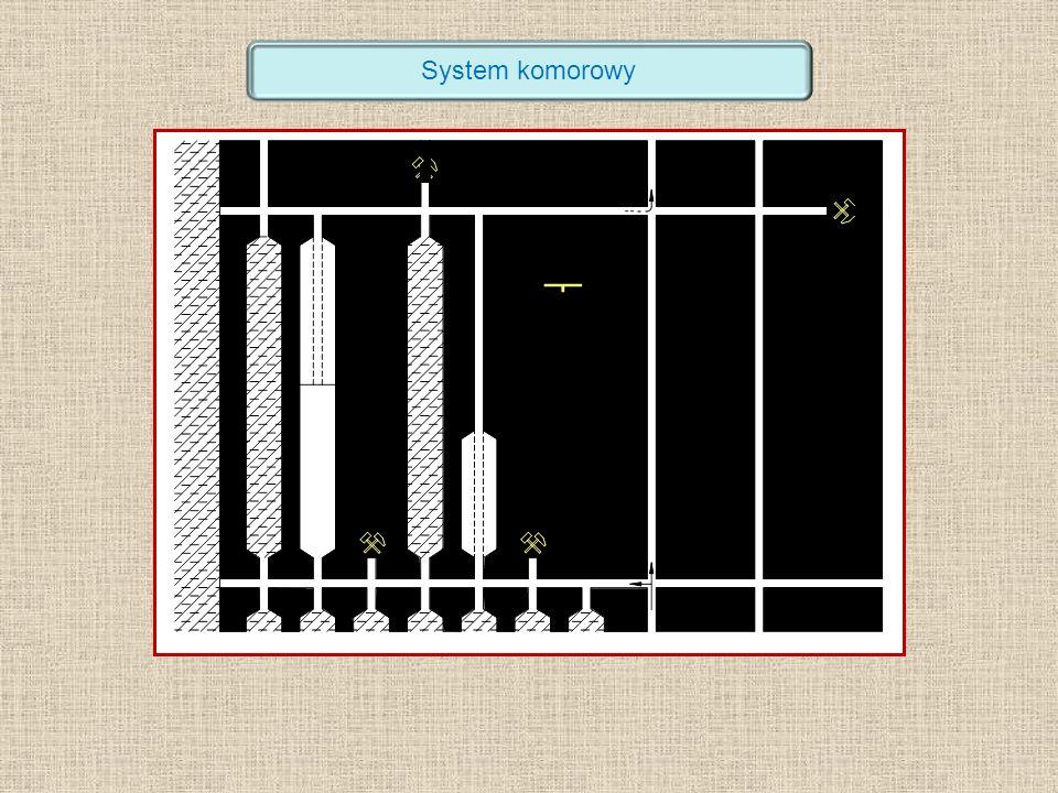 System komorowy