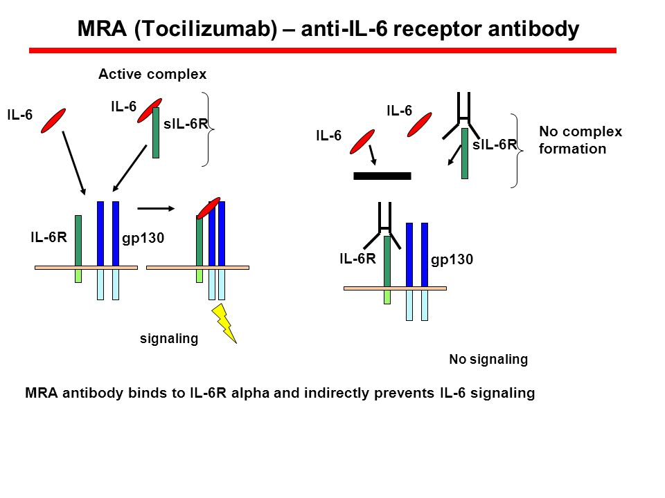 MRA (Tocilizumab) – anti-IL-6 receptor antibody