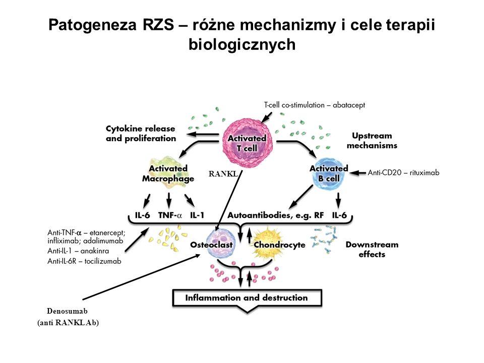Patogeneza RZS – różne mechanizmy i cele terapii biologicznych