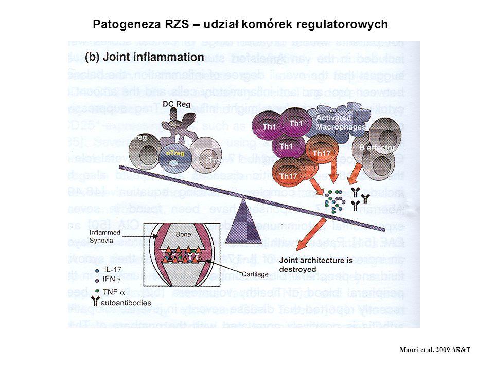 Patogeneza RZS – udział komórek regulatorowych