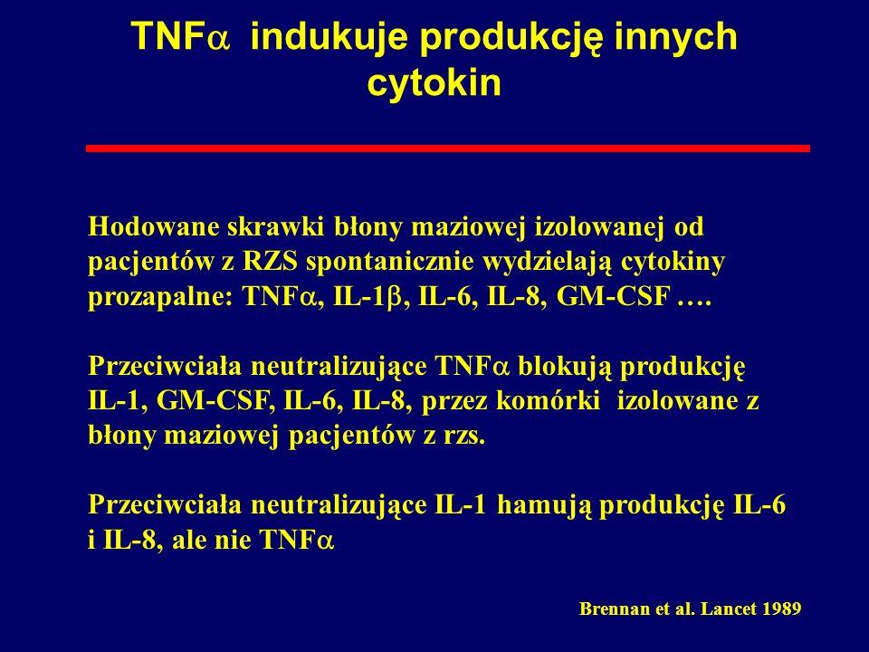 TNFa indukuje produkcję innych cytokin
