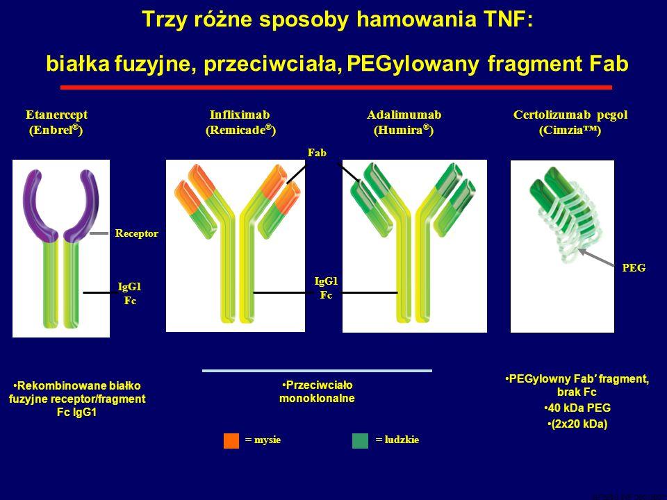 Trzy różne sposoby hamowania TNF: białka fuzyjne, przeciwciała, PEGylowany fragment Fab