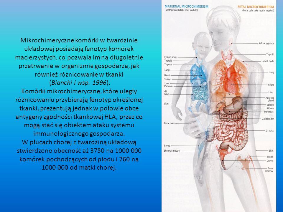 Mikrochimeryczne komórki w twardzinie układowej posiadają fenotyp komórek macierzystych, co pozwala im na długoletnie przetrwanie w organizmie gospodarza, jak również różnicowanie w tkanki (Bianchi i wsp.