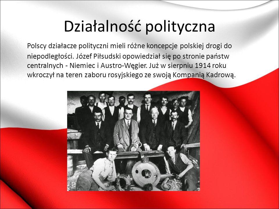 Działalność polityczna