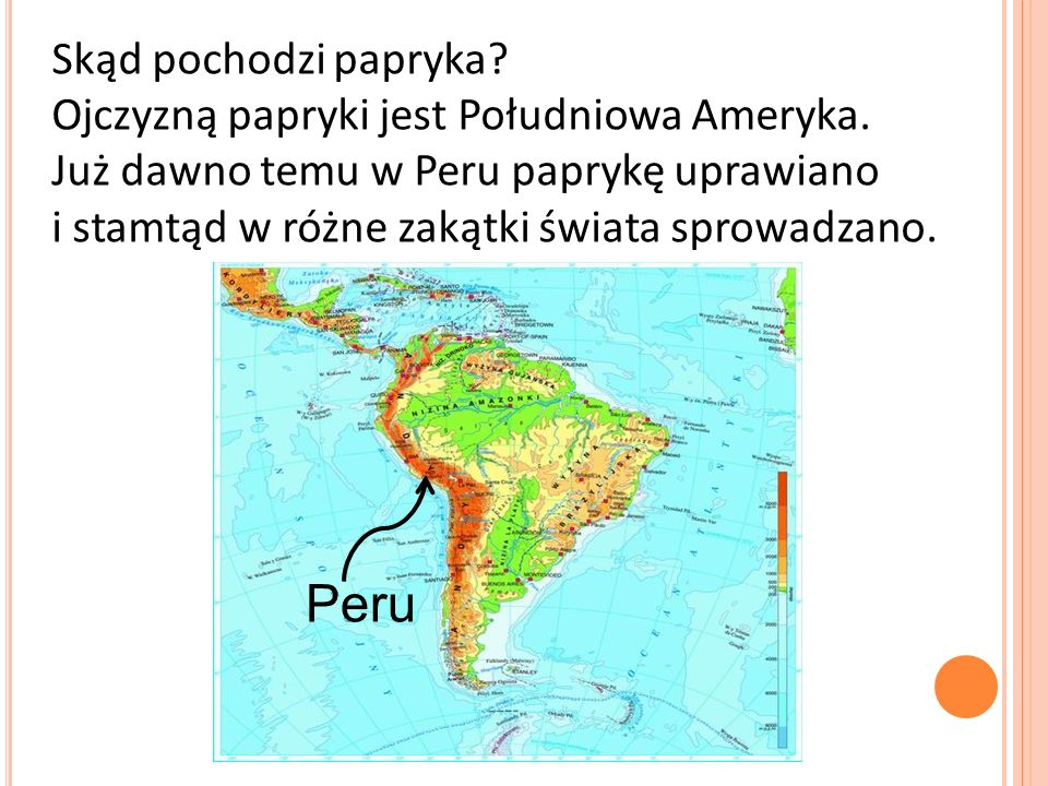 Skąd pochodzi papryka. Ojczyzną papryki jest Południowa Ameryka