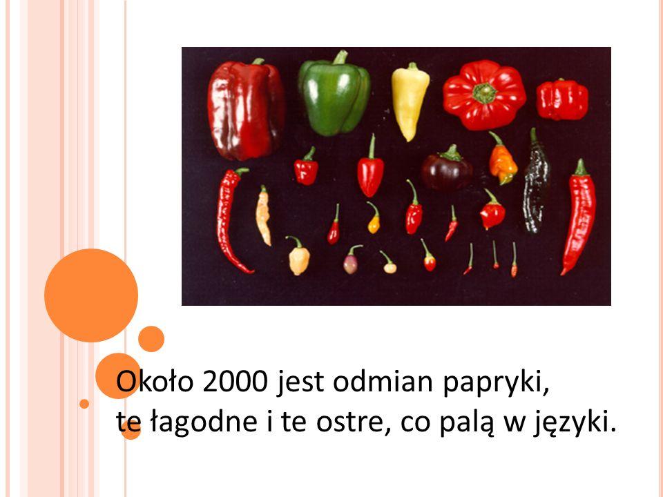 Około 2000 jest odmian papryki, te łagodne i te ostre, co palą w języki.