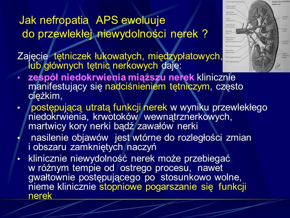 Jak nefropatia APS ewoluuje do przewlekłej niewydolności nerek