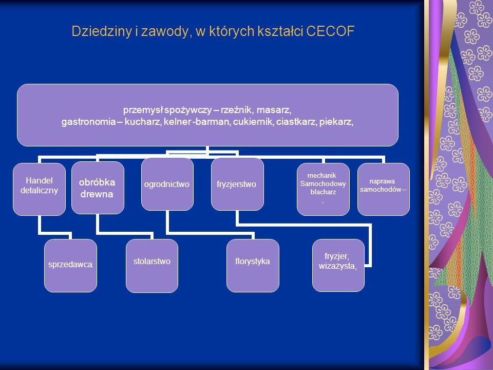Dziedziny i zawody, w których kształci CECOF