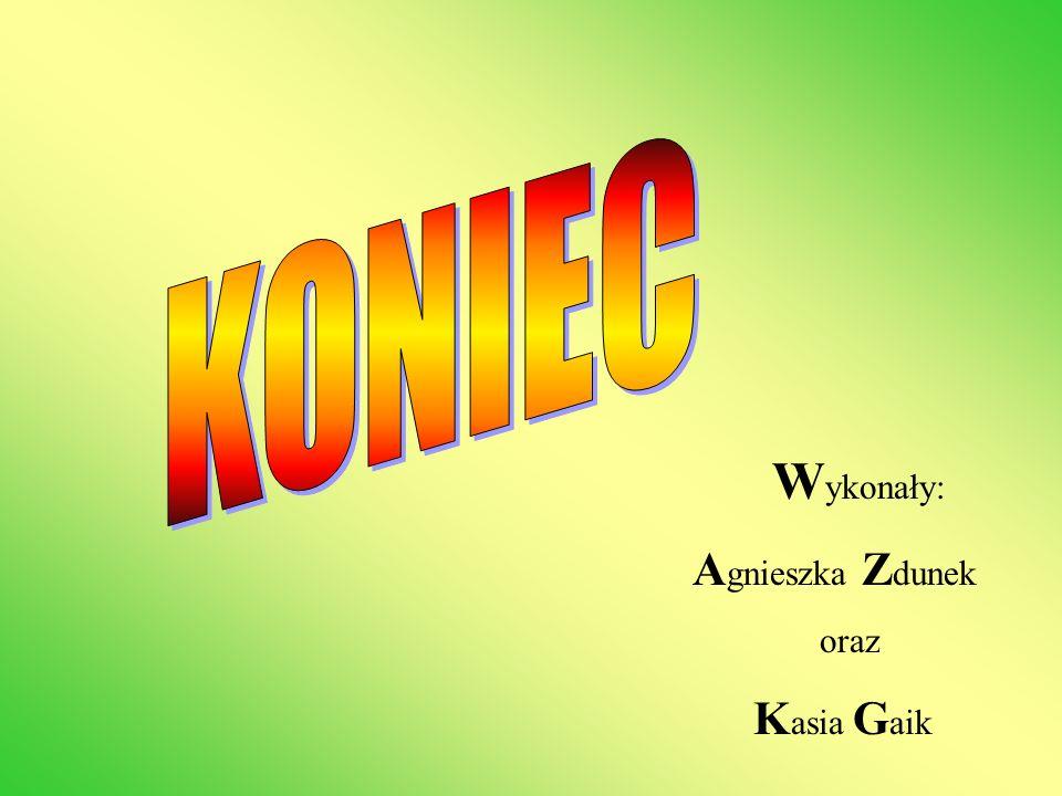 KONIEC Wykonały: Agnieszka Zdunek oraz Kasia Gaik