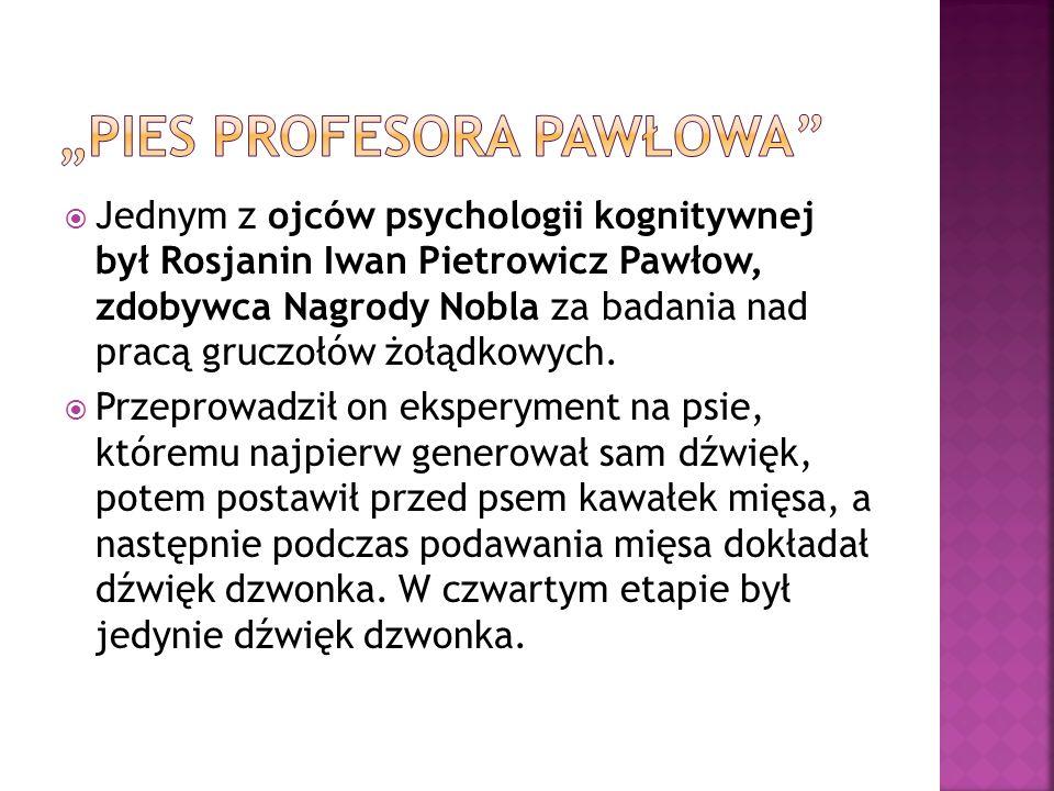 """PIES PROFESORA PAWŁOWA"