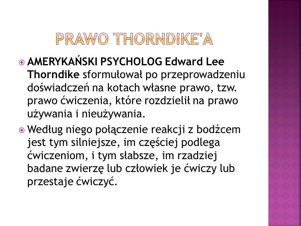 PRAWO THORNDIKE A