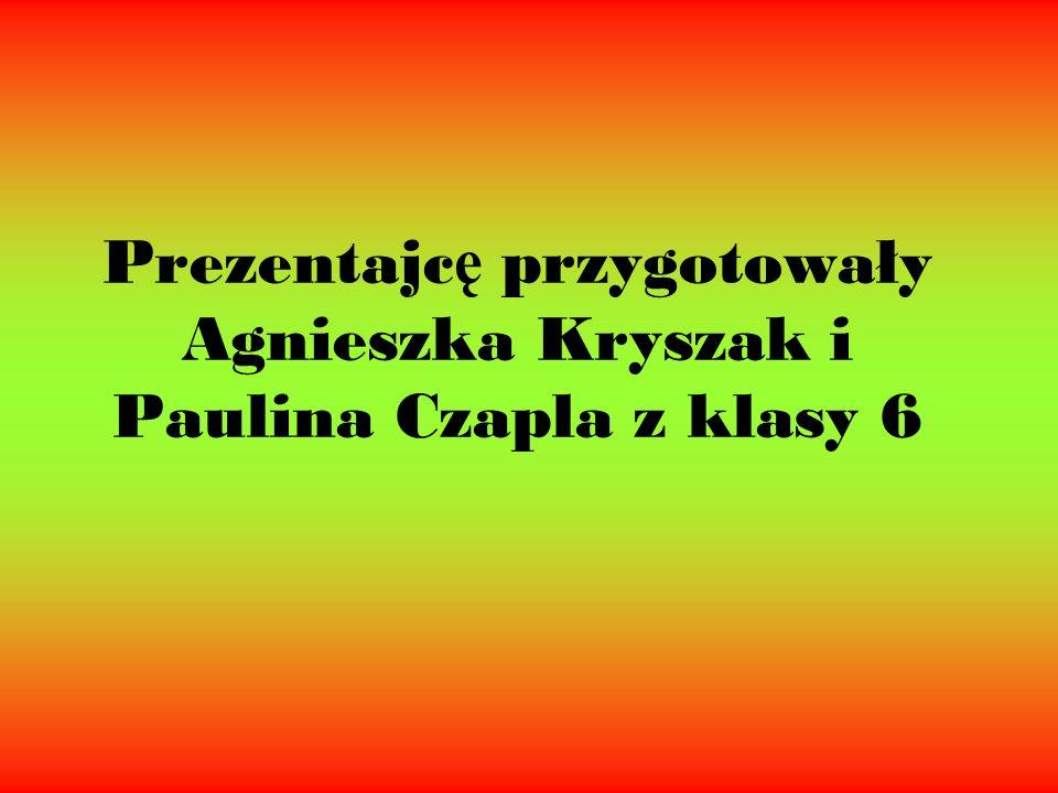 Prezentajcę przygotowały Agnieszka Kryszak i Paulina Czapla z klasy 6