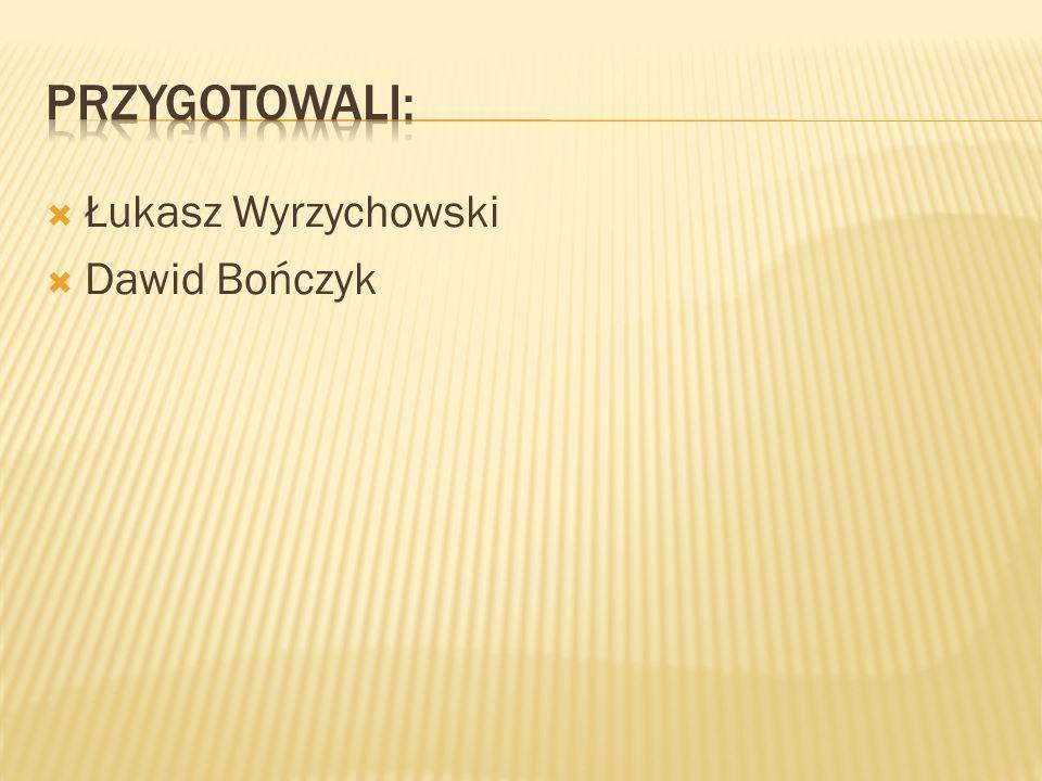 przygotowali: Łukasz Wyrzychowski Dawid Bończyk