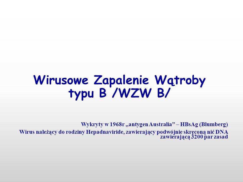 Wirusowe Zapalenie Wątroby typu B /WZW B/