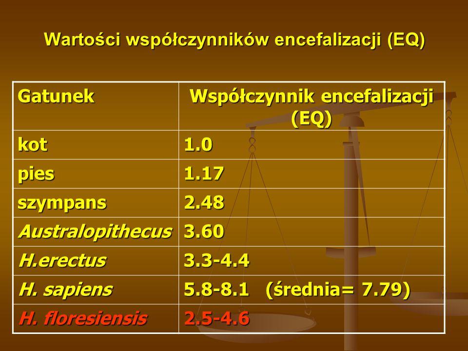 Wartości współczynników encefalizacji (EQ)