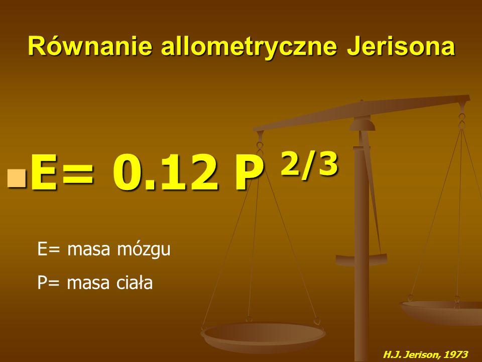 Równanie allometryczne Jerisona