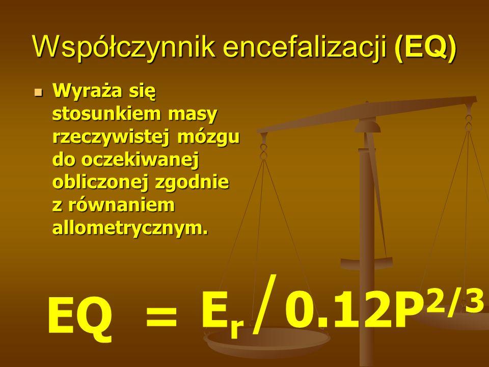 Współczynnik encefalizacji (EQ)