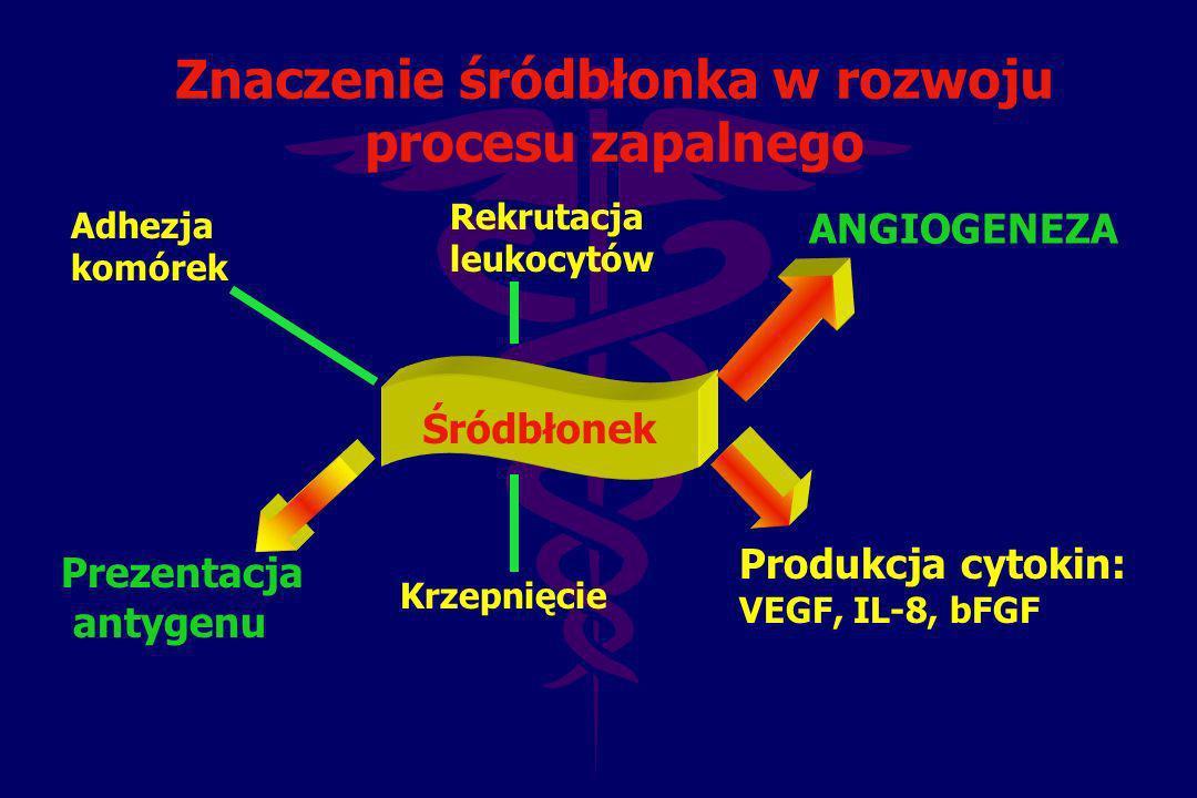 Znaczenie śródbłonka w rozwoju procesu zapalnego