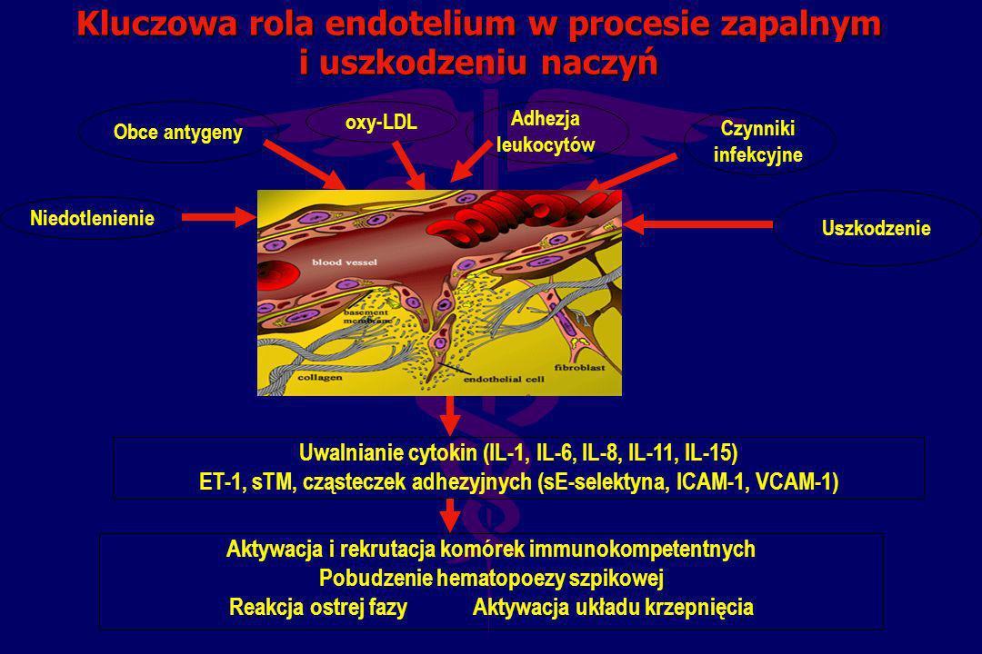 Kluczowa rola endotelium w procesie zapalnym i uszkodzeniu naczyń