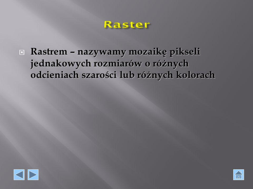 Raster Rastrem – nazywamy mozaikę pikseli jednakowych rozmiarów o różnych odcieniach szarości lub różnych kolorach.