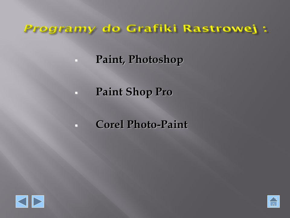 Programy do Grafiki Rastrowej :