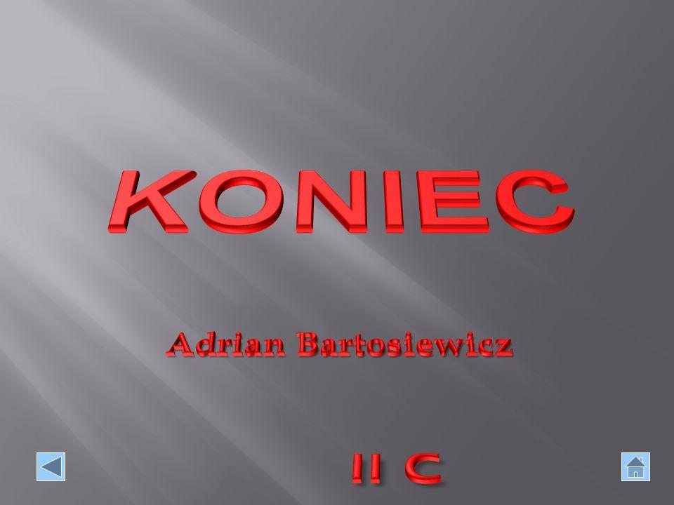 KONIEC Adrian Bartosiewicz II C
