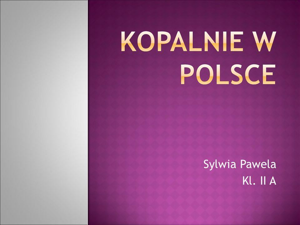 Sylwia Pawela Kl. II A
