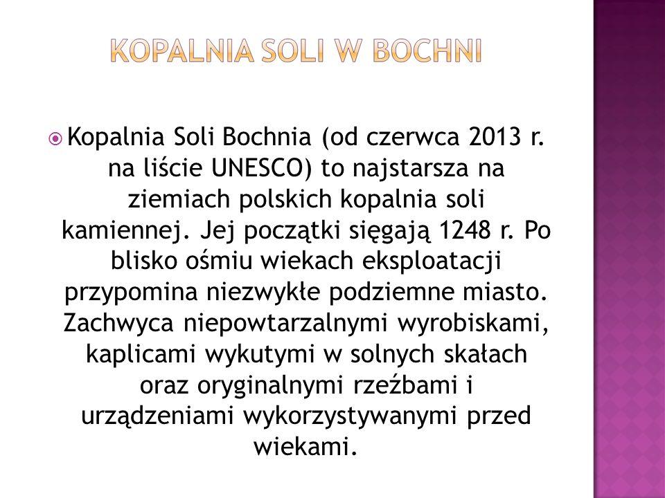 Kopalnia Soli Bochnia (od czerwca 2013 r