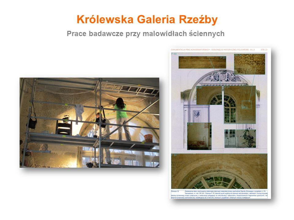 Królewska Galeria Rzeźby Prace badawcze przy malowidłach ściennych