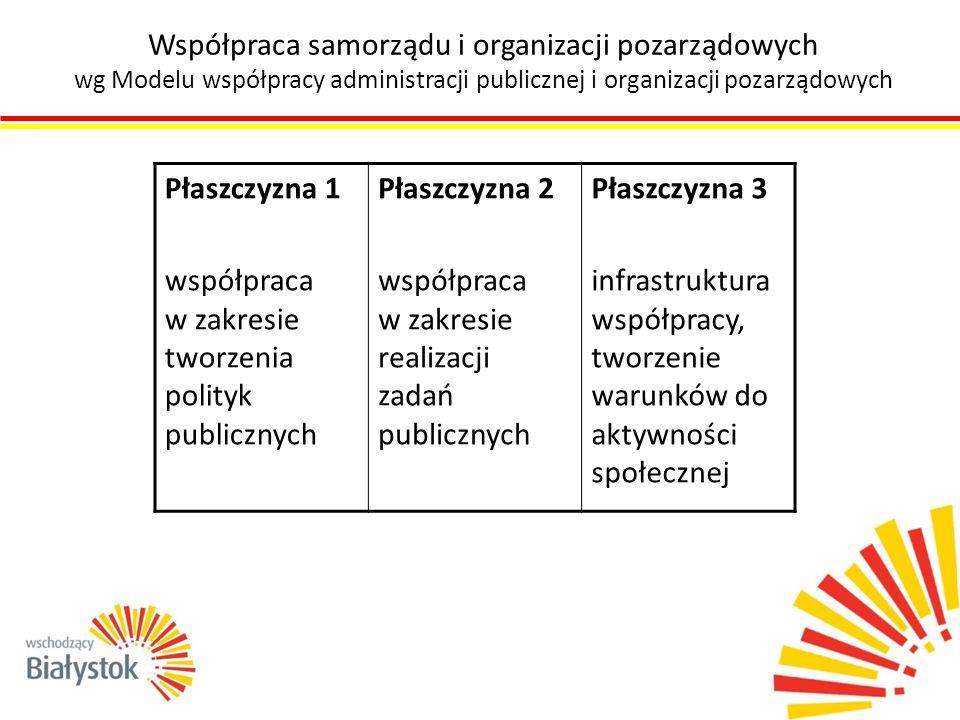 Współpraca samorządu i organizacji pozarządowych